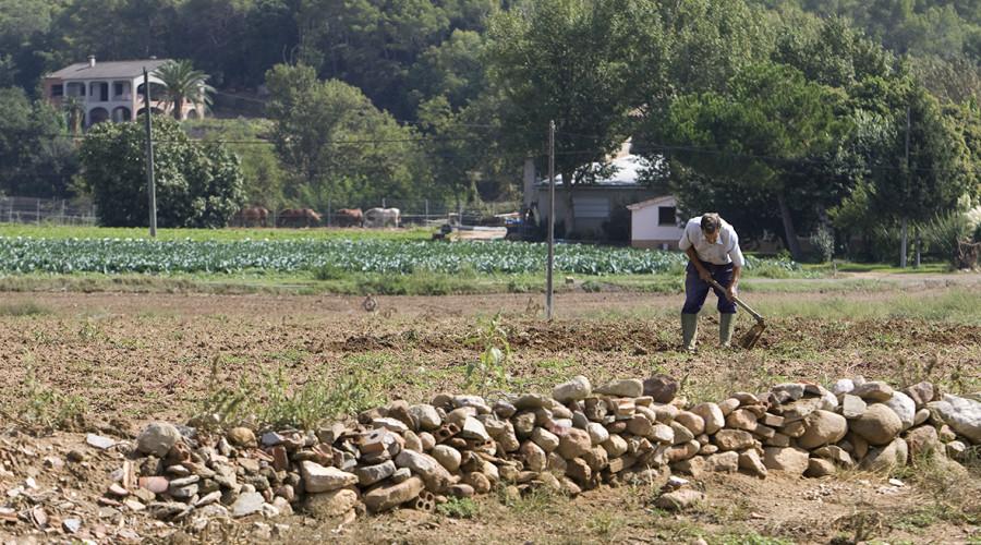 El 10 % de la población rural española ha nacido en el extranjero